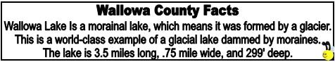 FactBee Wallowa County Facts